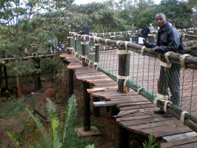 Nairobi Safari